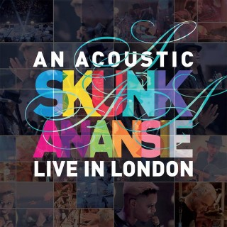 Ne ratez pas Skunk Anansie en acoustique à la Rockhal