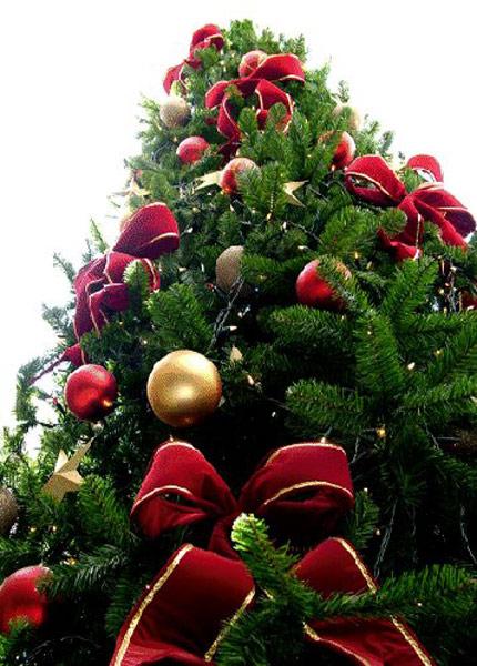 Differdange : le marché de Noël s'installe